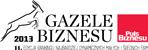 Gazele Biznesu 2