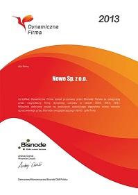 Certyfikat Dynamiczna Firma 2013